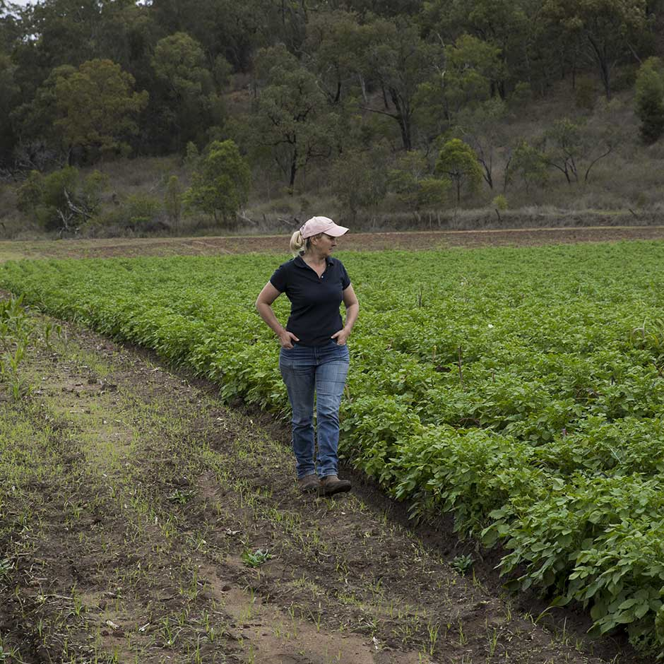 https://www.australianorganic.com/wp-content/uploads/2019/10/AustralianOrganics-Farmers-HelenGeoff-6.jpg