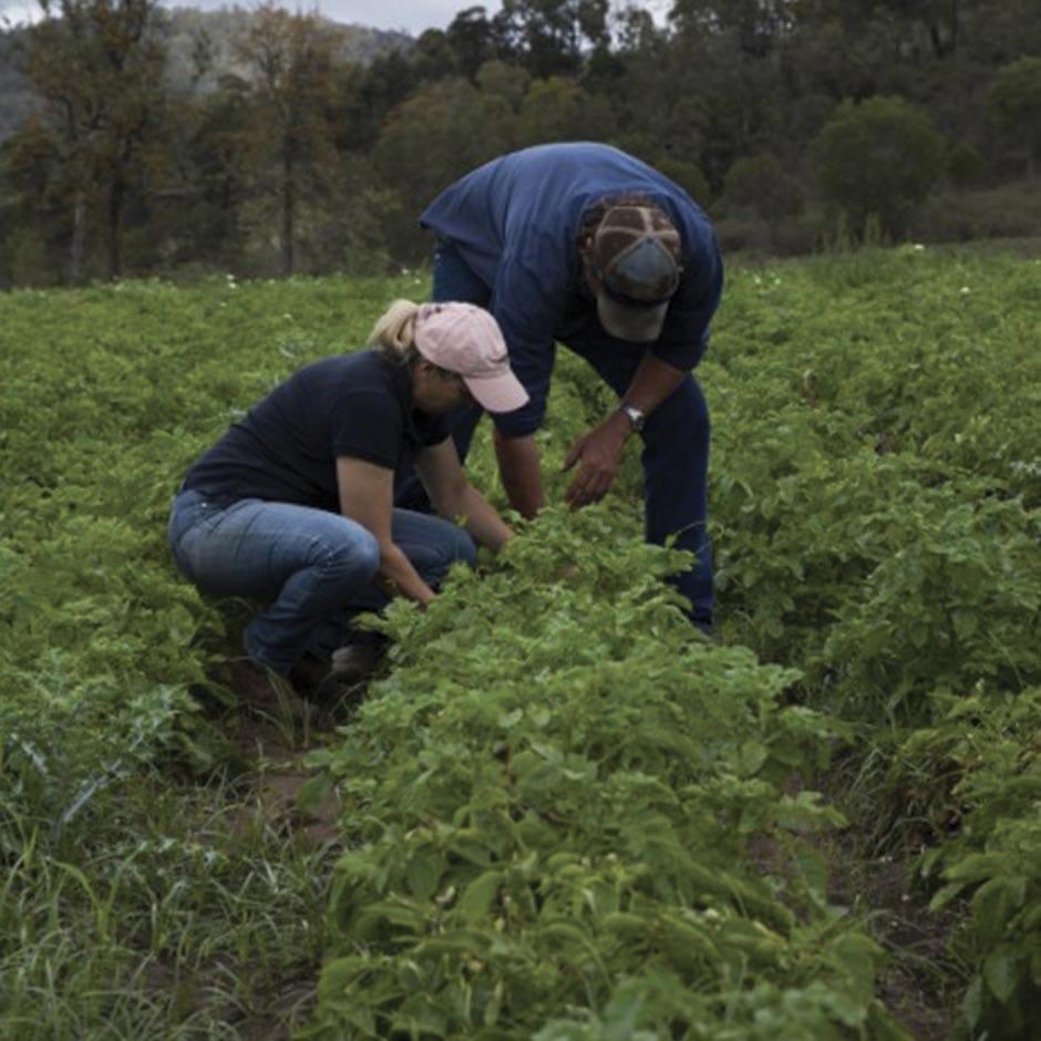 https://www.australianorganic.com/wp-content/uploads/2019/10/AustralianOrganics-Website-Farmers-HelenGeoff-3.jpg