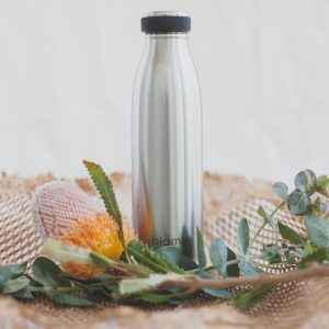 biome stainless steel water bottle